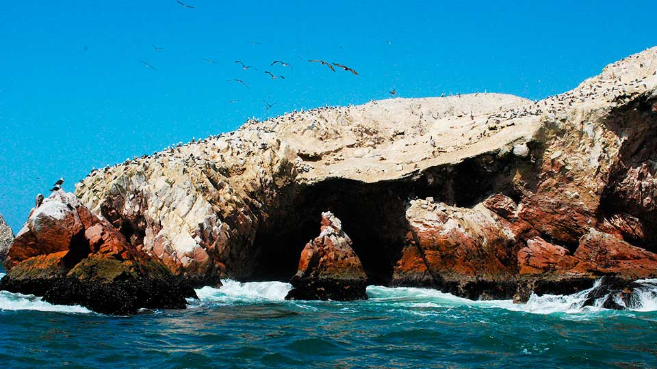 places to visit in Peru ballestas islands