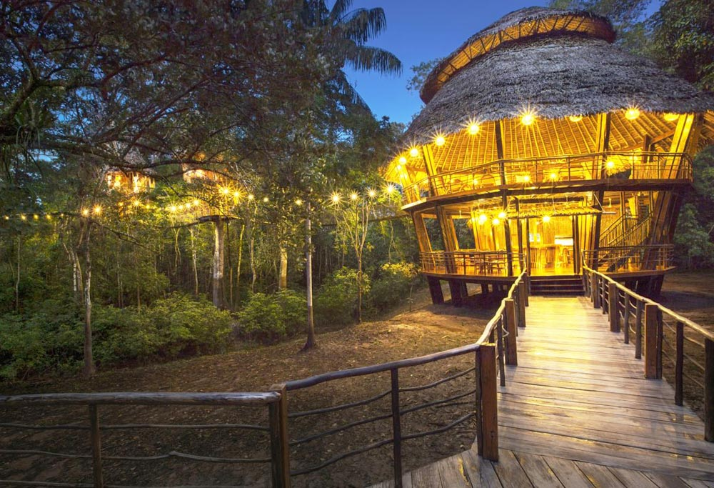 tree house lodge 3 in amazon lodges iquitos