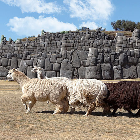 luxury saqsayhuaman vacations